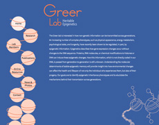 The Greer Lab Website