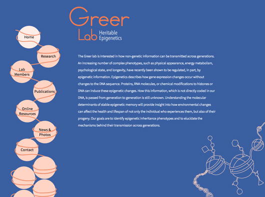 The Greer Lab